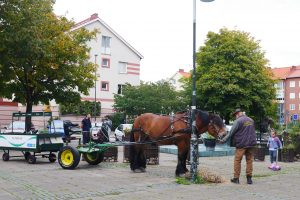Ekostaden Augustenborg