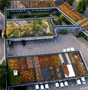 Augustenborgs Botaniska Takträdgård och Ekostaden Augustenborg